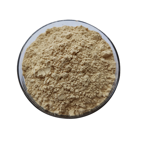Pineapple extract enzemy Powder